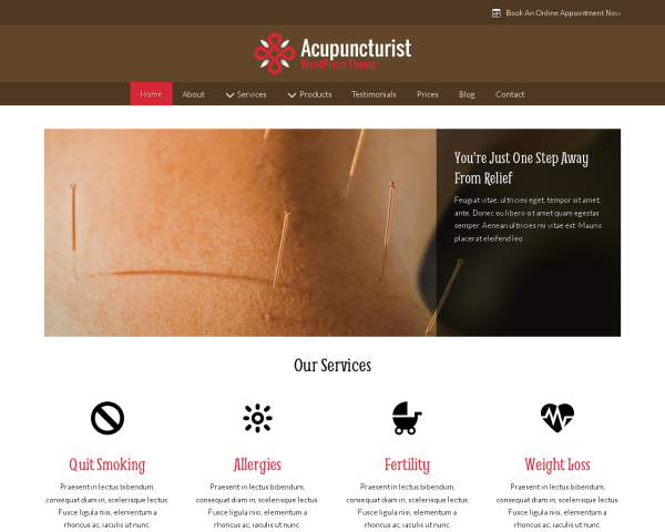 Acupuncturist WordPress Theme thumbnail (desktop screenshot)