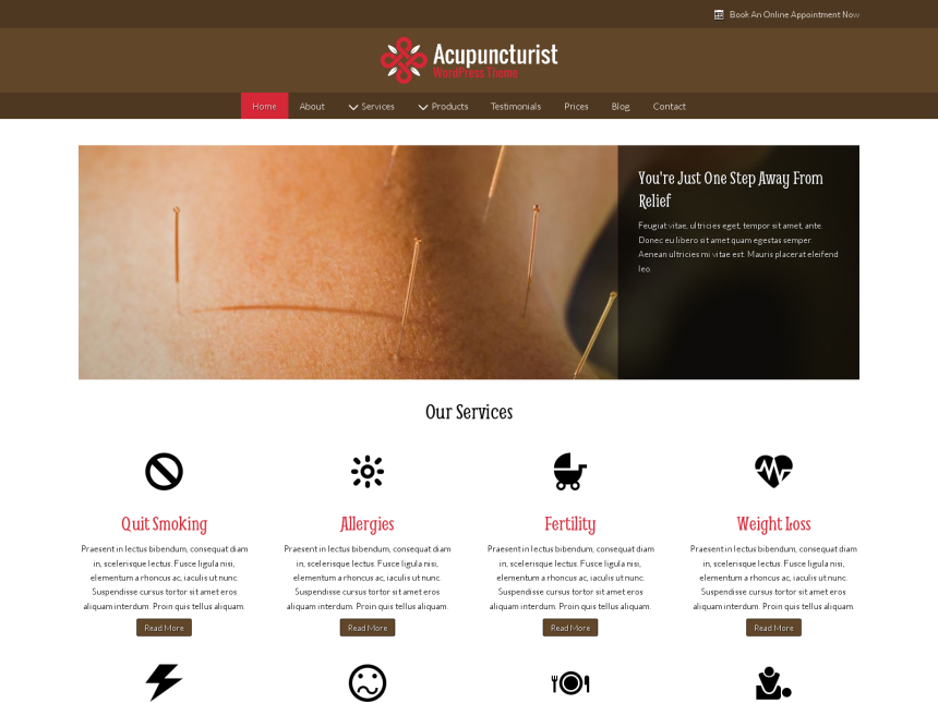 desktop screenshot of the WordPress theme 'Acupuncturist Wordpress Theme'