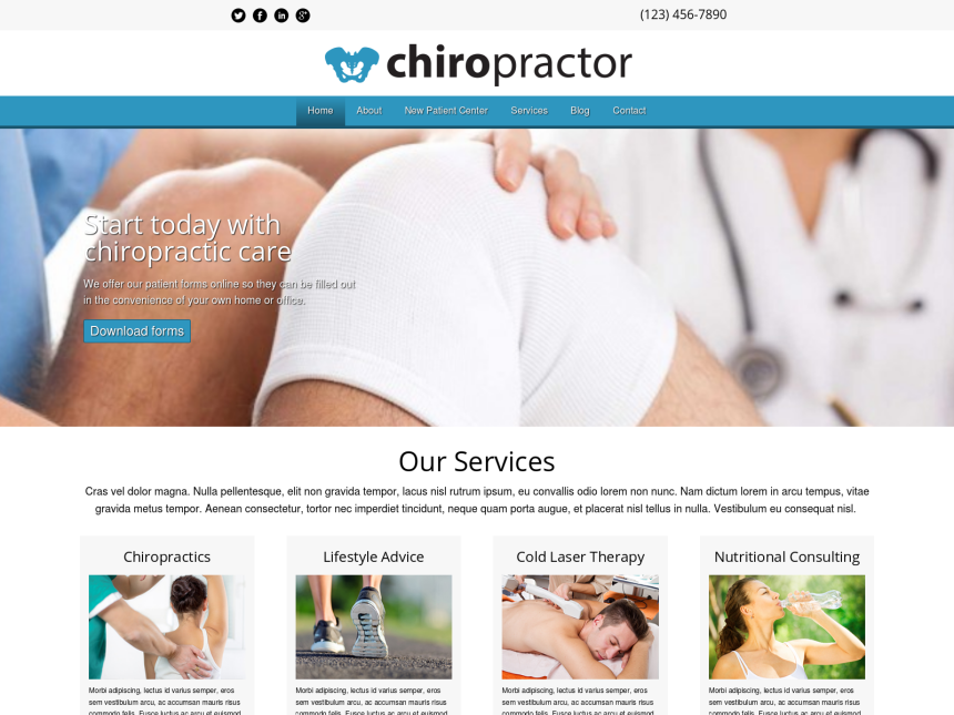 desktop screenshot of the WordPress theme 'Chiropractor WordPress theme'