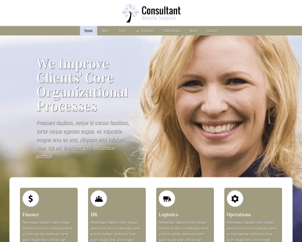 image representation of the Consultant Website Template