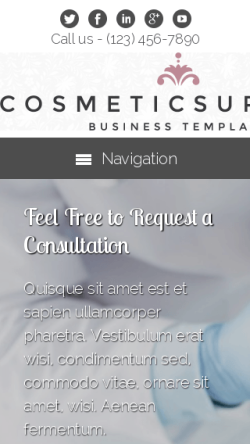mobile phone screenshot WordPress theme 'Cosmetic Surgery WordPress theme'