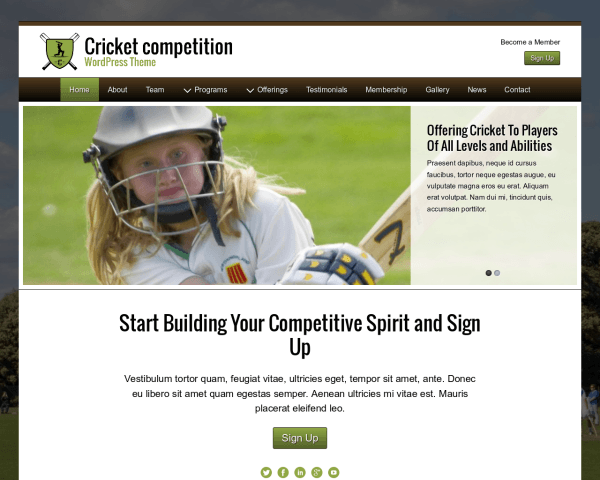 Desktop screenshot of the Cricket Competition Wordpress Theme