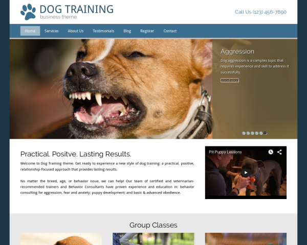 image representation of the Dog Training