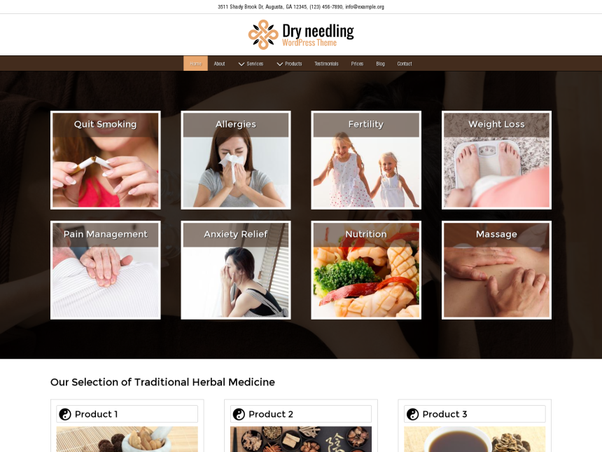 desktop screenshot of the WordPress theme 'Dry Needling Wordpress Theme'