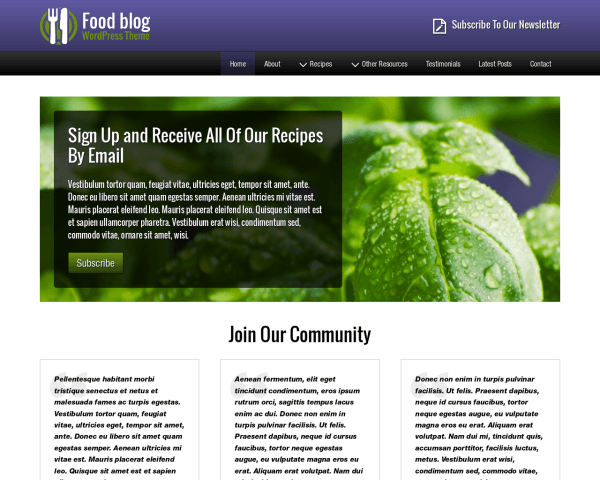 Desktop screenshot of the Food Blog Wordpress Theme