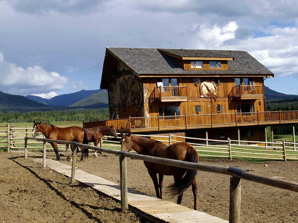 Horse Ranch Wordpress Theme Wp Themes For Resort Owners