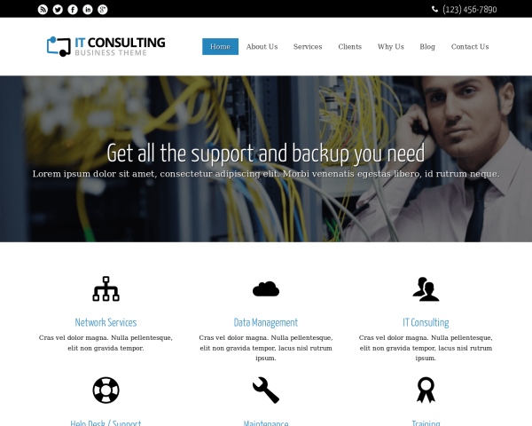 laptop screenshot WordPress theme 'IT Consulting WordPress theme'