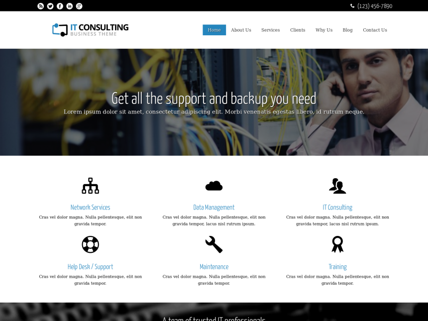 desktop screenshot of the WordPress theme 'IT Consulting WordPress theme'