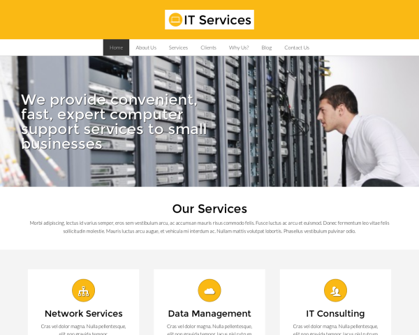 image representation of the IT Services