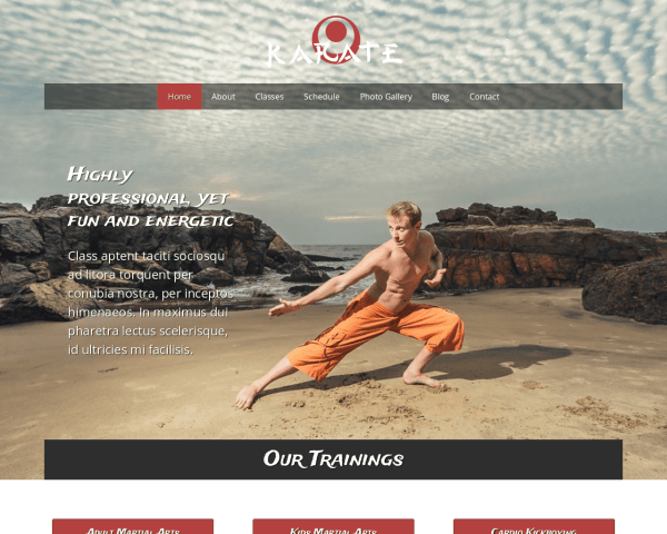 Desktop screenshot of the Karate Website Template