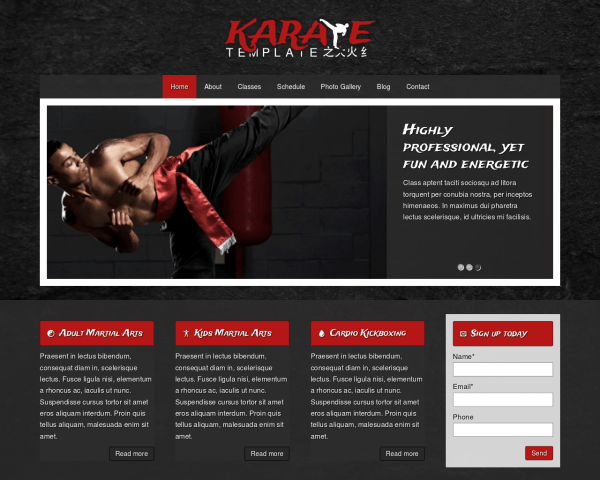 Desktop screenshot of the Karate Wordpress Theme
