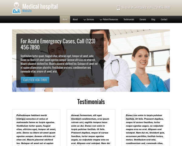 Desktop screenshot of the Medical Hospital Website