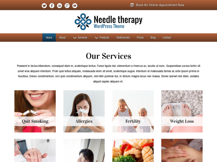 landscape tablet screenshot of WordPress theme 'Needle Therapy Wordpress Theme'