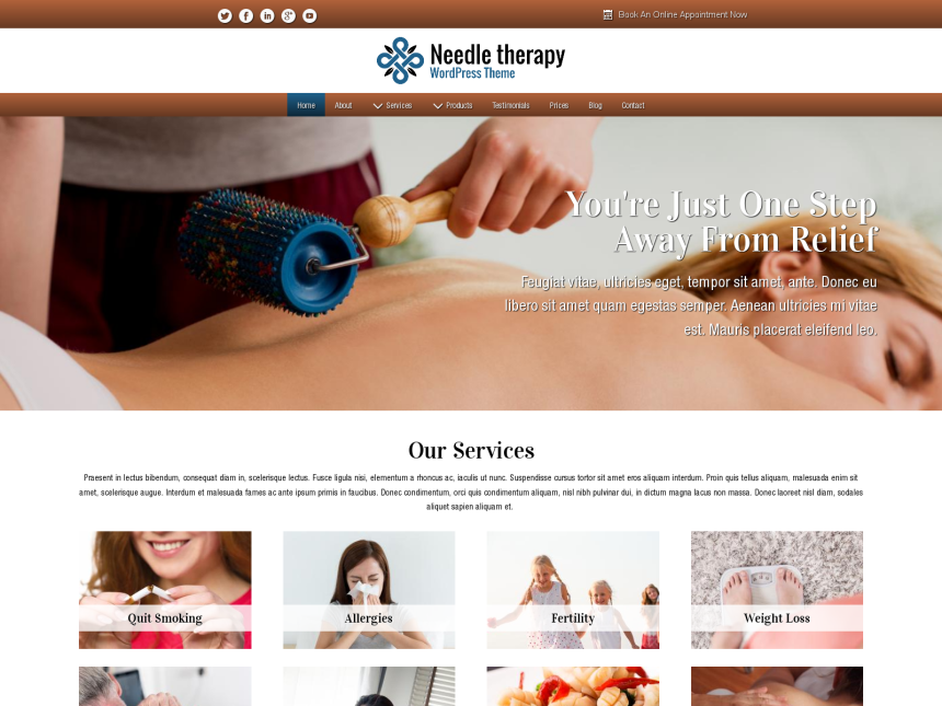 desktop screenshot of the WordPress theme 'Needle Therapy Wordpress Theme'