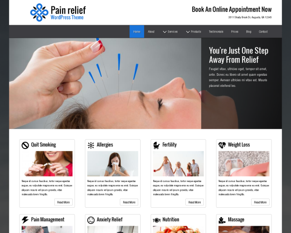 Pain Relief WordPress Theme thumbnail (desktop screenshot)