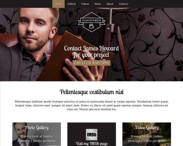 laptop screenshot WordPress theme 'Performer WordPress theme'