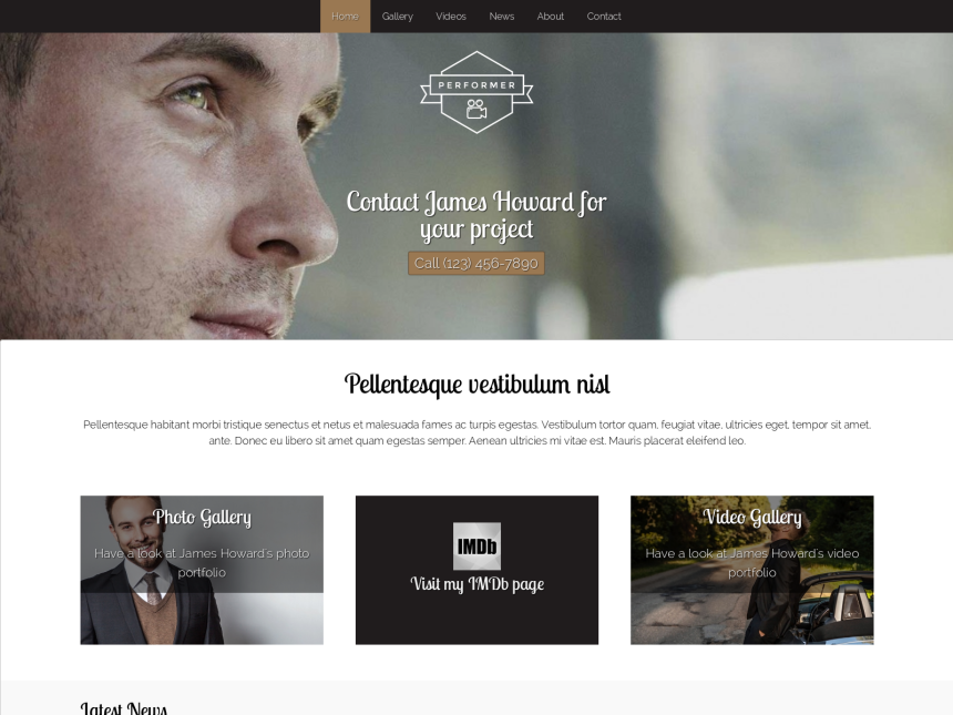 desktop screenshot of the WordPress theme 'Performer WordPress theme'
