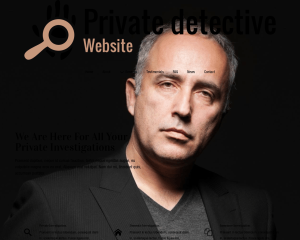 Desktop screenshot of the Private Detective Website