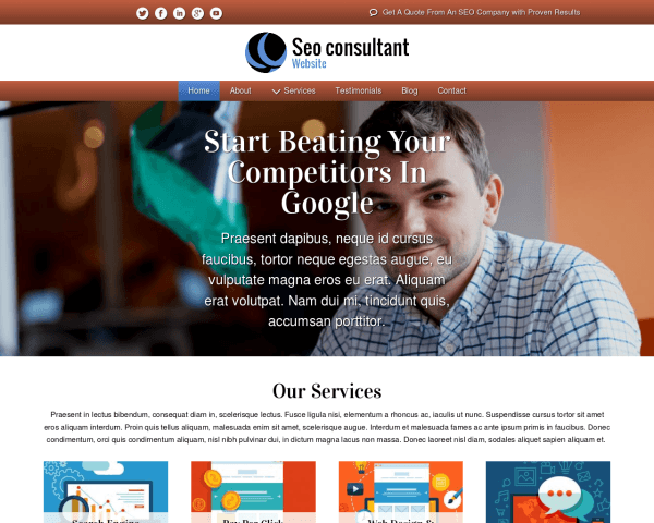 Desktop screenshot of the Seo Consultant Website