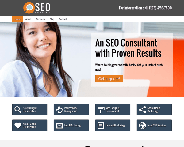 Desktop screenshot of the Seo Consultant Wordpress Theme