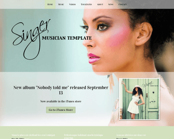 Desktop screenshot of the Singer Wordpress Theme