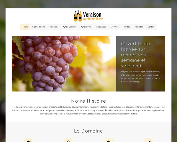 Veraison Wordpress Theme