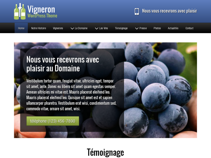 landscape tablet screenshot of WordPress theme 'Vigneron Wordpress Theme'