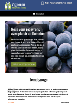 tablet screenshot WordPress theme 'Vigneron Wordpress Theme'