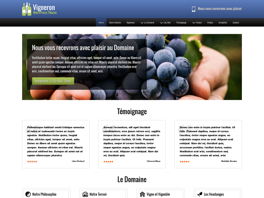 desktop screenshot of the WordPress theme 'Vigneron Wordpress Theme'