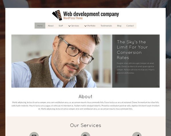 Desktop screenshot of the Web Development Company Wordpress Theme