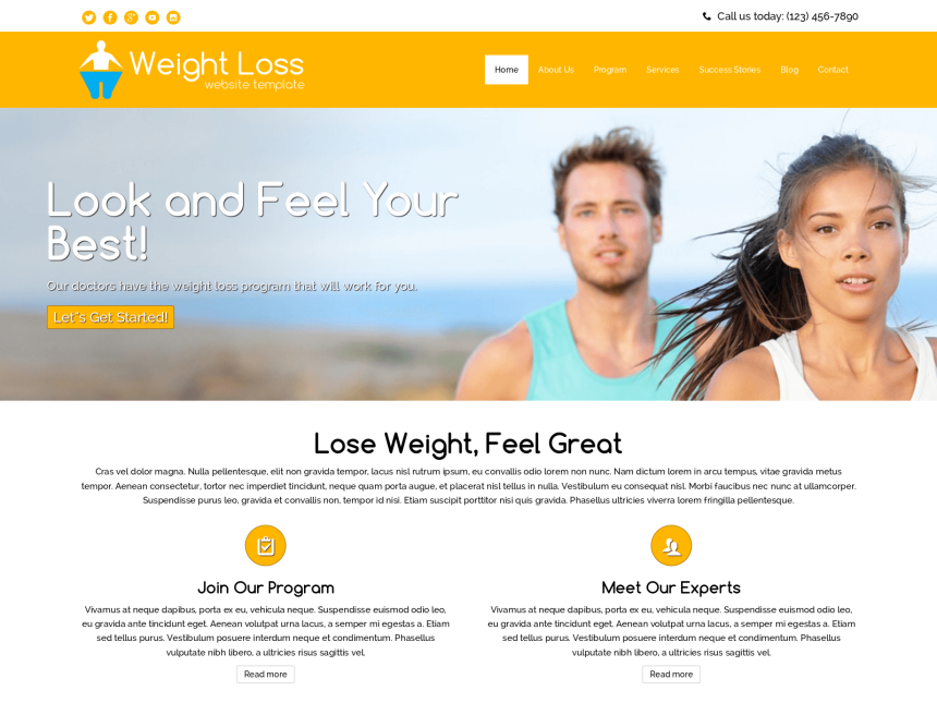 desktop screenshot of the WordPress theme 'Weight Loss Website Template'