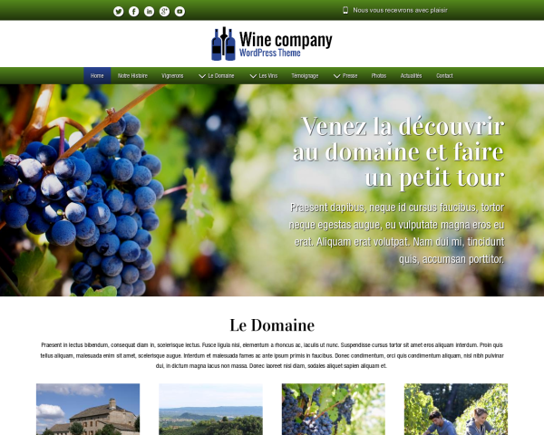 Desktop screenshot of the Wine Company Wordpress Theme